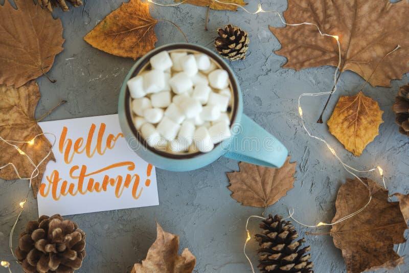 Blauwe mok met koffie, hete chocolade of cacao met heemst op grijze concrete droge bladeren als achtergrond en het liggen, kegels stock fotografie