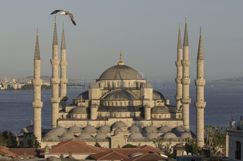 Blauwe moskee, Istanboel, Turkije royalty-vrije stock afbeelding