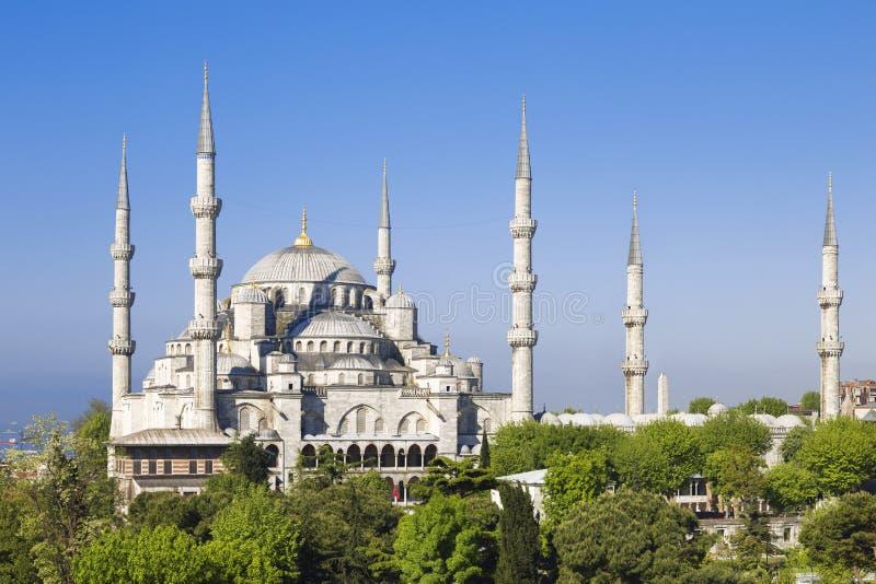 Blauwe moskee zonnige dag, Istanboel royalty-vrije stock afbeeldingen