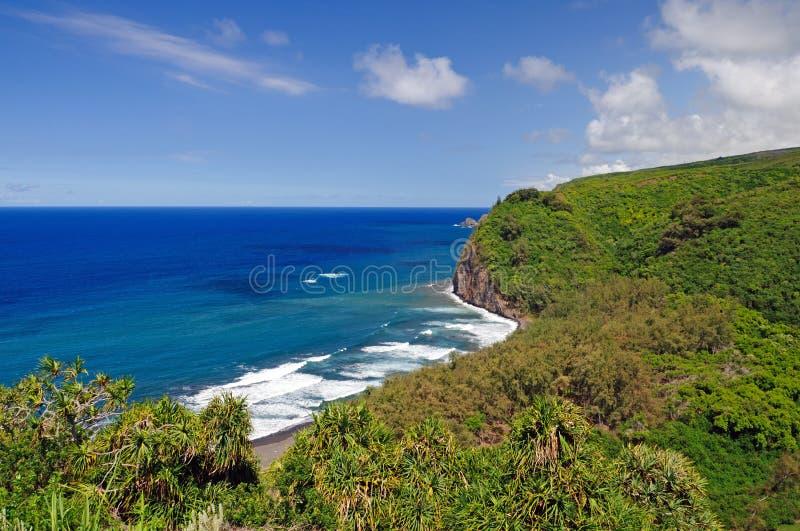Blauwe oceaan en een trropical kust royalty-vrije stock afbeeldingen