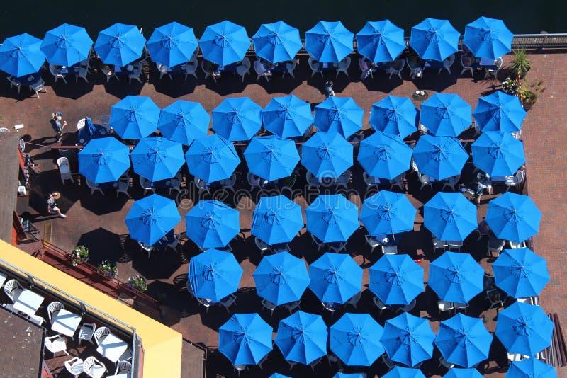Blauwe Paraplu's stock afbeeldingen