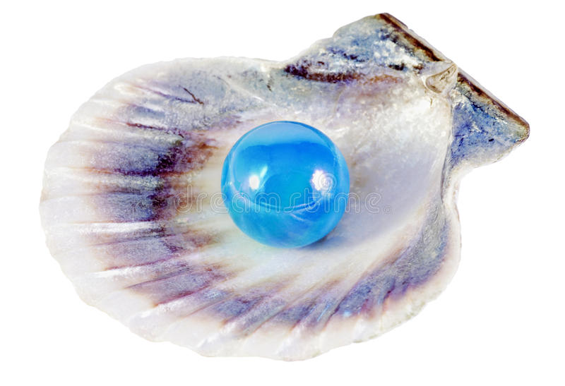 Blauwe parel en shell stock fotografie