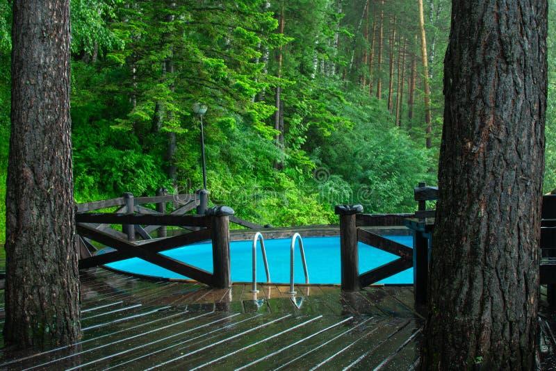 Blauwe pool in groen bos stock fotografie