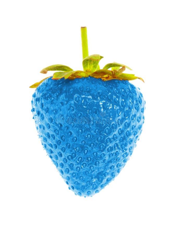 Blauwe rijpe aardbei stock fotografie