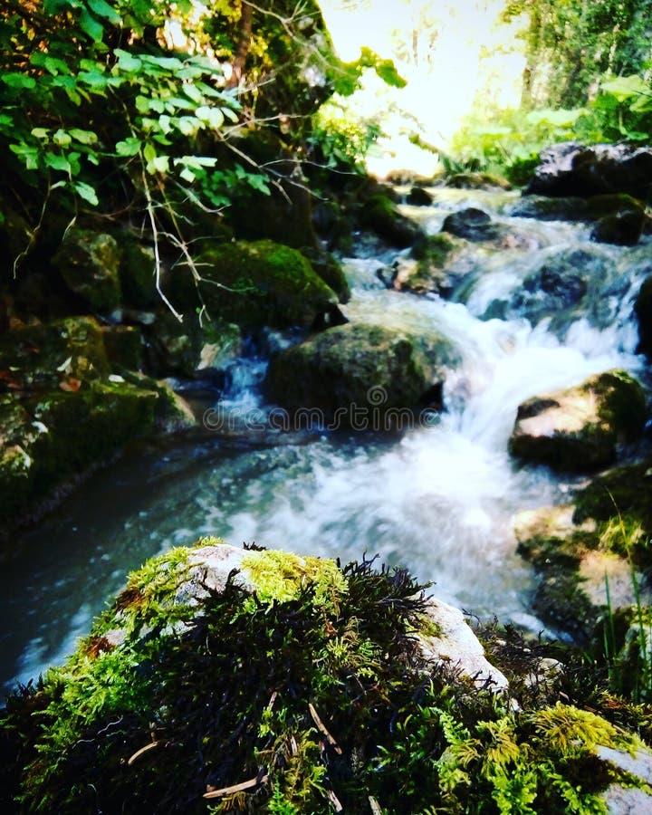 Blauwe rivier Tara stock fotografie