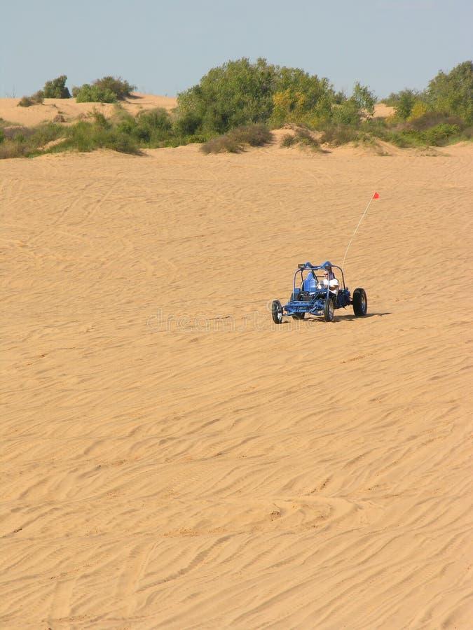 Blauwe Sandrail In De Weinig Sahara Stock Afbeeldingen