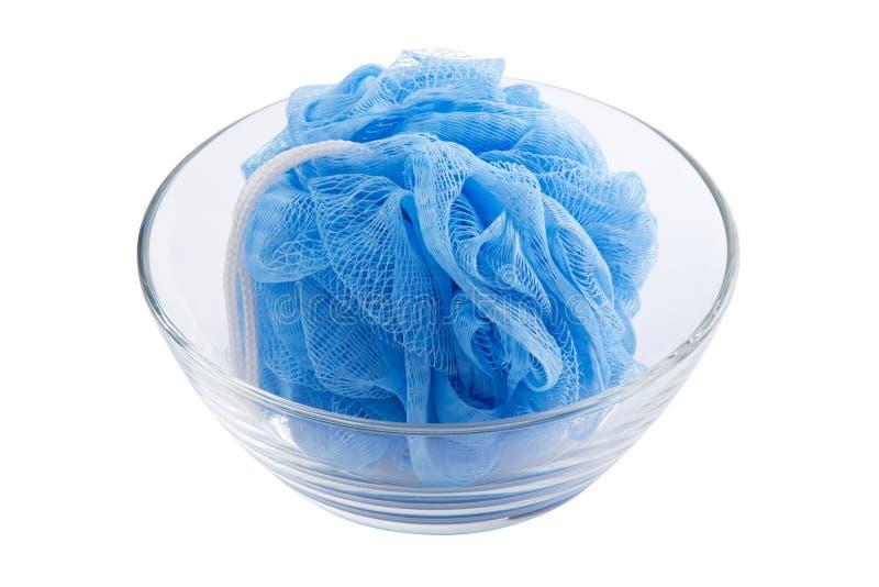 Blauwe spong stock afbeeldingen