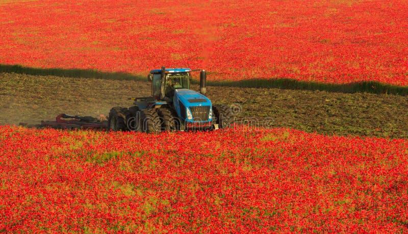 Blauwe tractor op het gebied van rode papavers royalty-vrije stock afbeelding