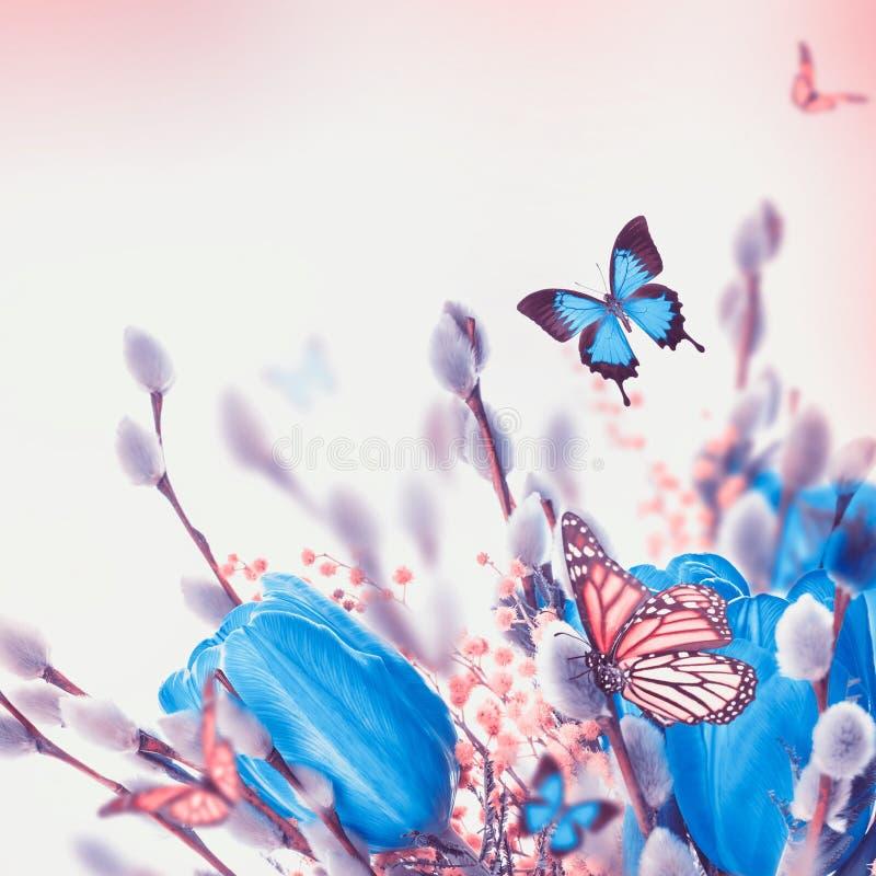 Blauwe tulpen met mimosa en vlinder vector illustratie