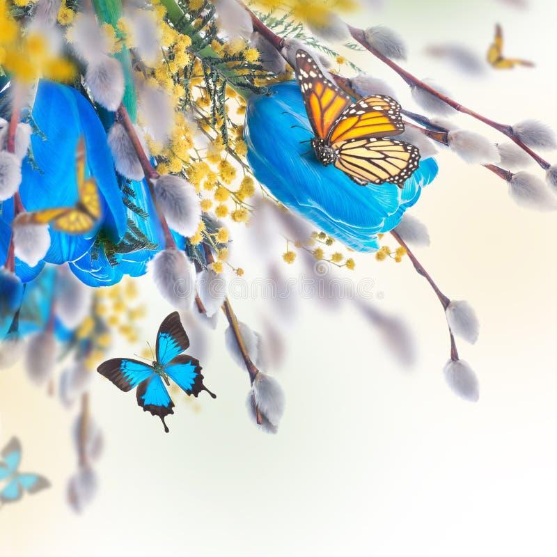 Blauwe tulpen met mimosa en vlinder royalty-vrije illustratie