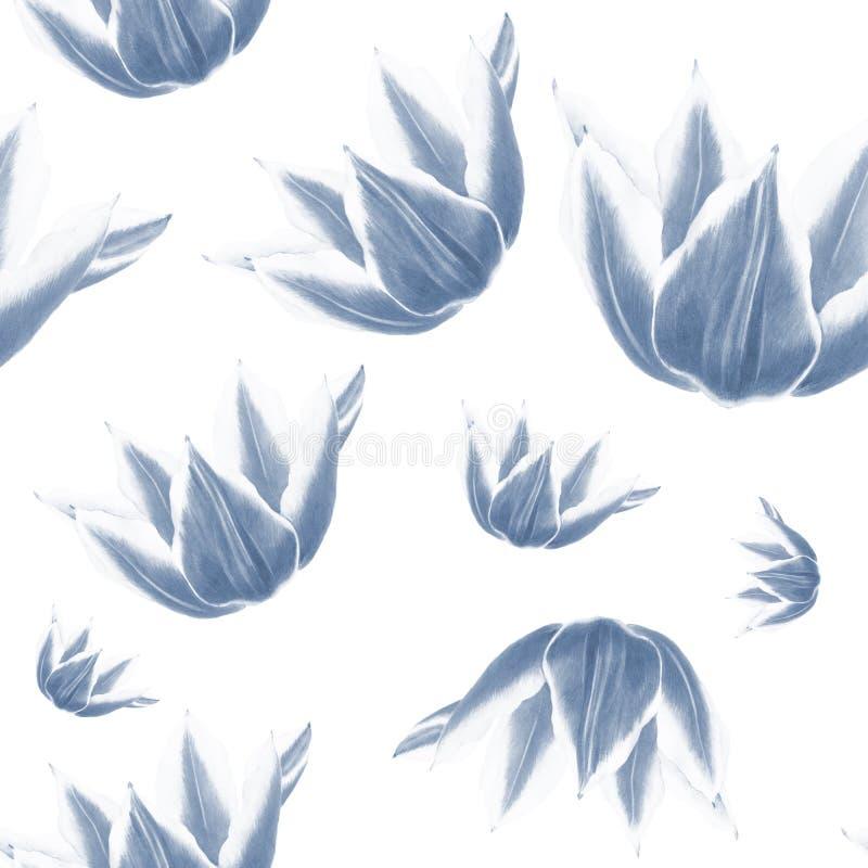 Blauwe tulpenbloem op witte achtergrond Naadloos waterverfpatroon royalty-vrije illustratie