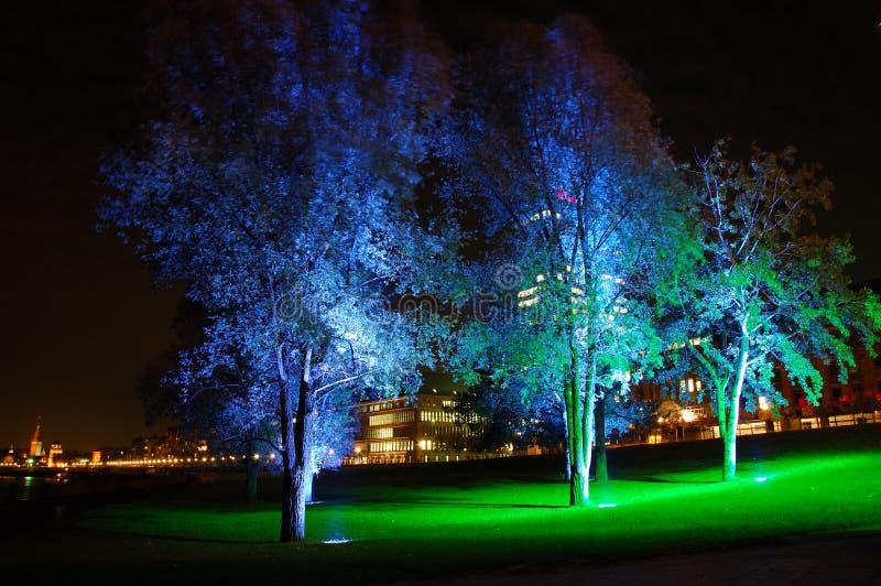 Blauwe verlichte bomen stock afbeelding. Afbeelding bestaande uit ...