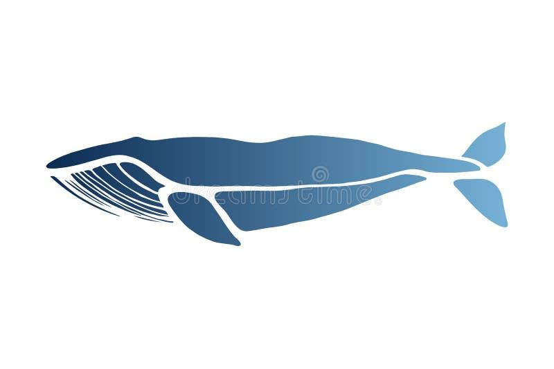 blauwe vinvis Balaenopteramusculus Walvis op een lichte achtergrond wordt geïsoleerd die Embleem voor uw ontwerp Getrokken hand royalty-vrije illustratie