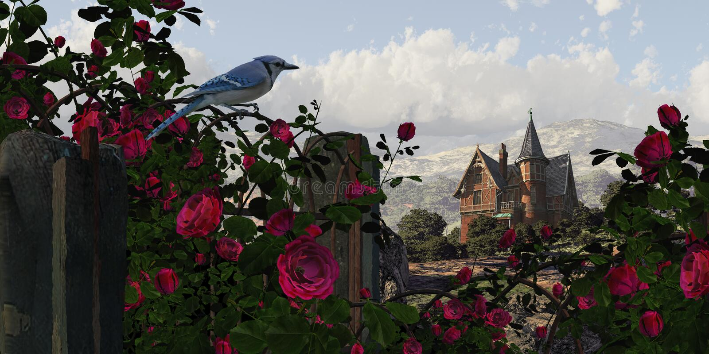 Blauwe Vlaamse gaai onder de Rozen royalty-vrije stock afbeelding