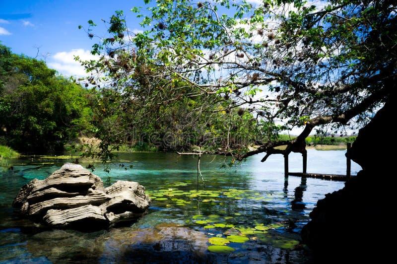 Blauwe watermeer en aard stock foto