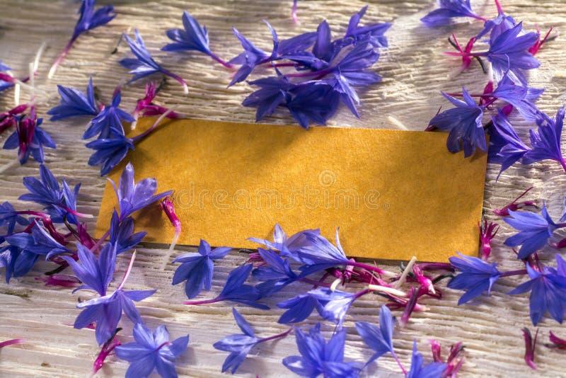 Blauwe wilde bloemen en lege markering op hout royalty-vrije stock afbeelding