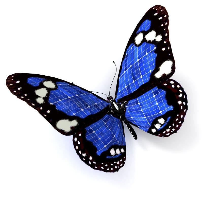 Blauwe zonnevlinder royalty-vrije illustratie