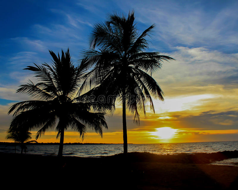 Blauwe zonsondergang royalty-vrije stock foto