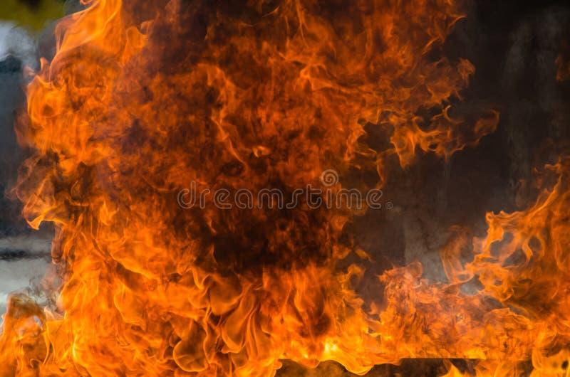 Blaze Fire Flame Background royaltyfria bilder