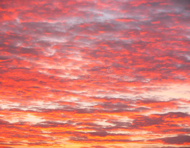 Blazing sky royalty free stock images
