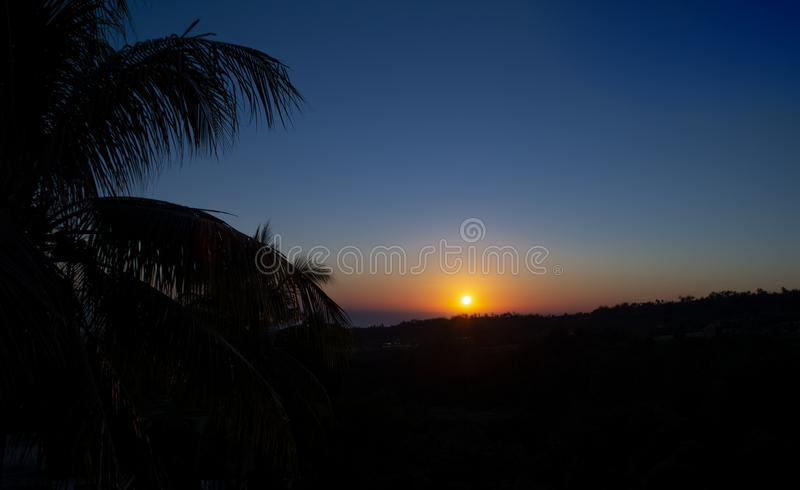 Blazing sunrise on tropical landscape with palm tree royalty free stock image