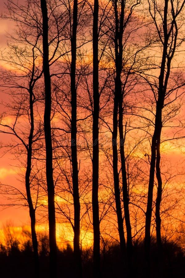 Free Blazing Sunset Stock Photo - 103429440
