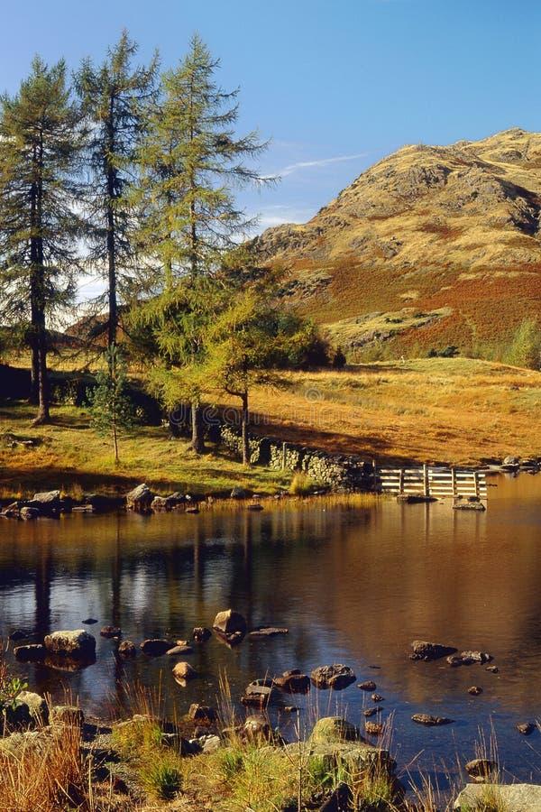 Blea Tarn, Langdale, Cumbria zdjęcie royalty free