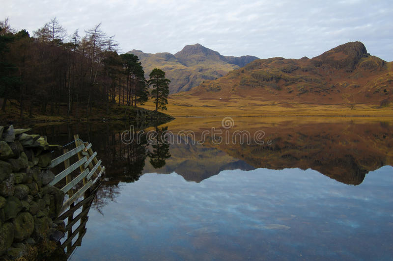 Blea Tarn. With reflections of fnece and the Langdales, Cumbria royalty free stock photo