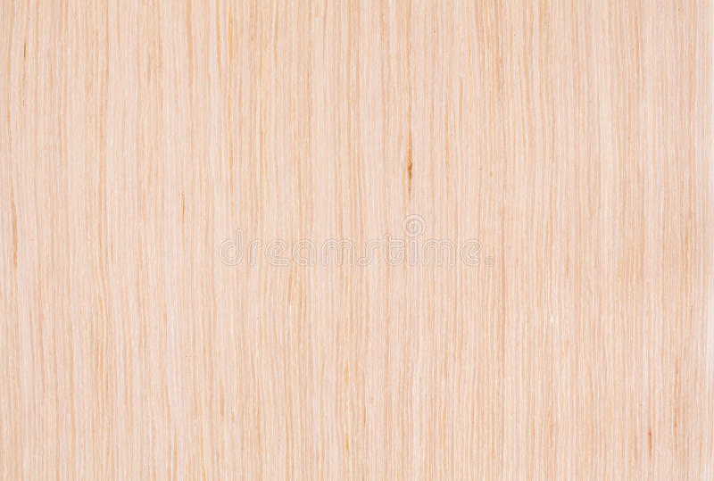 Bleached oak wood texture royalty free stock photography