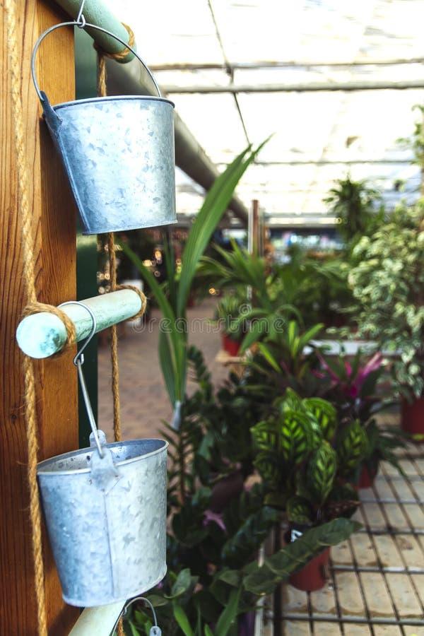 Blecheimer für Anlagen im Garten stockfoto