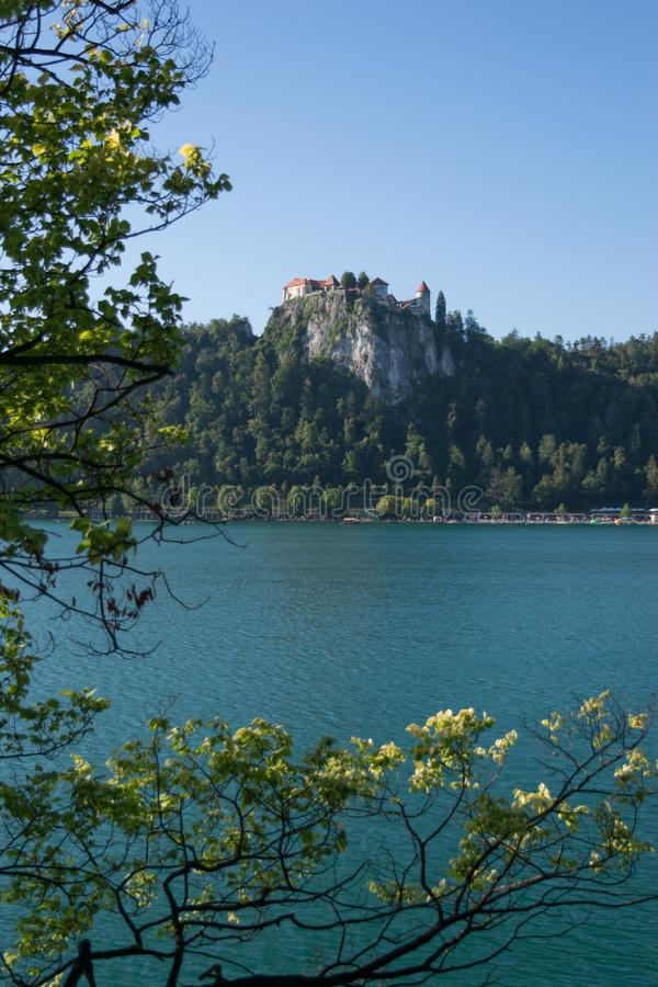 Bled with lake, island and mountains in background, Slovenia royalty free stock image