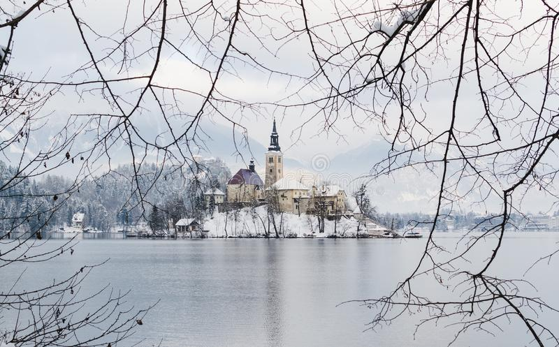 BLED, SLOVENIA - JANUARY 2015: view over Gothic church on the lake island stock photo