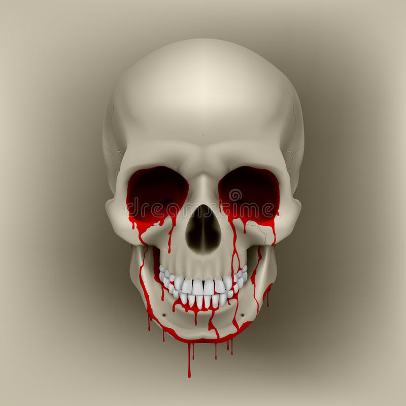 Download Bleeding Skull stock vector. Image of lowbrow, biology - 24492699