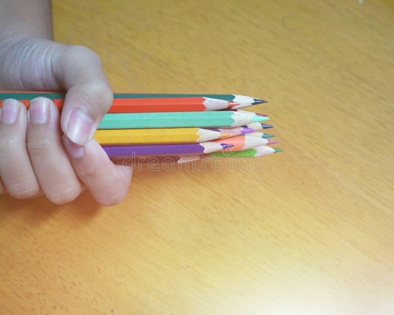 Bleistift-Farben in der Palme stockbilder