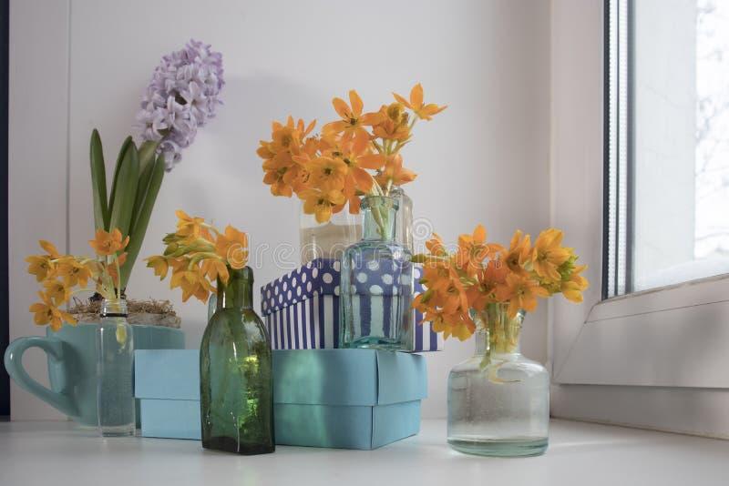 Bleke hyacint in blauwe kop en het Bloeien gele Ornithogalum Dubium in een transparante flessen in plaats daarvan vaas stock fotografie