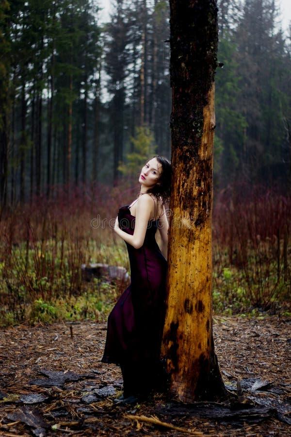 Bleke vrouw in purpere kleding die op een boom liggen royalty-vrije stock foto's
