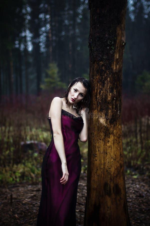 Bleke vrouw in purpere kleding die op een boom liggen stock afbeeldingen