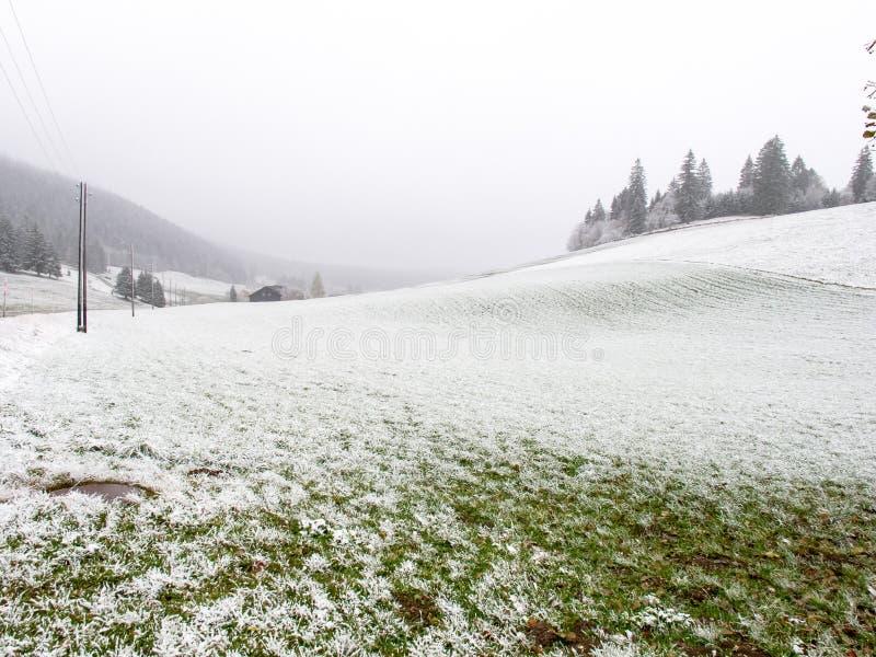 Blekt dimmigt vinterlandskap med ljus snö arkivfoto