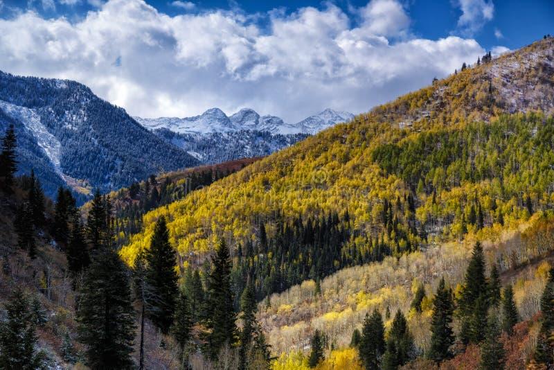 Blending of Seasons stock images