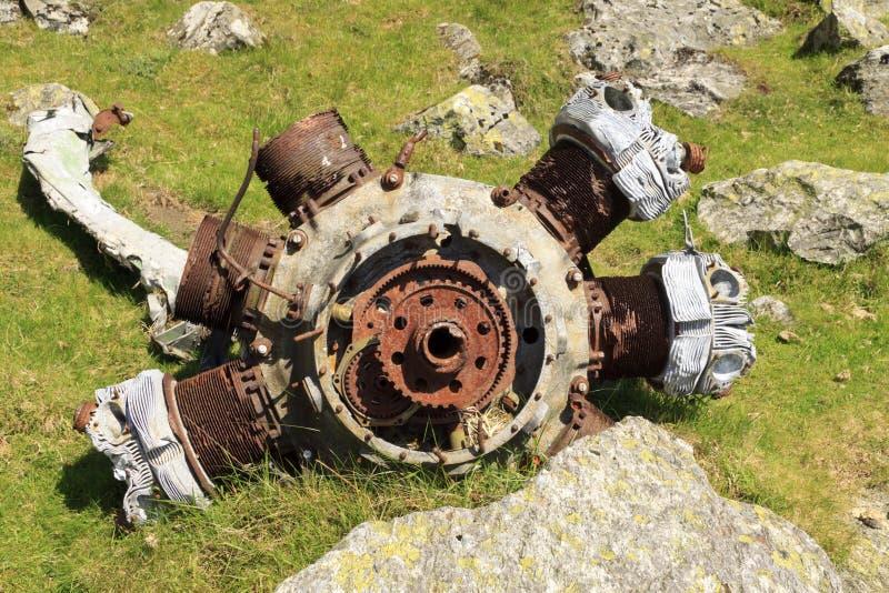 Blenheim radiell motor arkivbild
