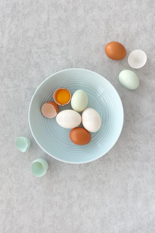 Bleu, Brown et oeufs blancs dans une cuvette bleue image libre de droits