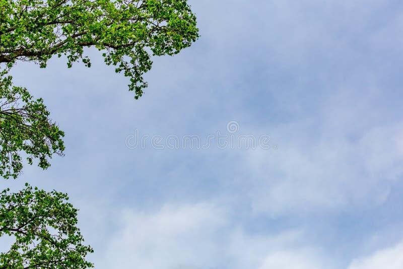 Bleu et Smokey Cloud Sky Background photo libre de droits