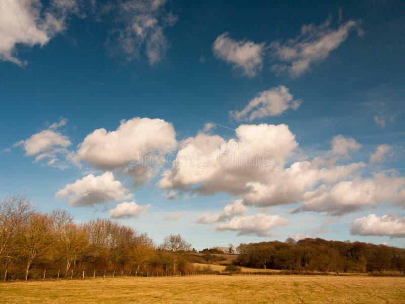 bleu lumineux d'agriculture de champ de ferme avec la nature de paysage de campagne de nuages image stock