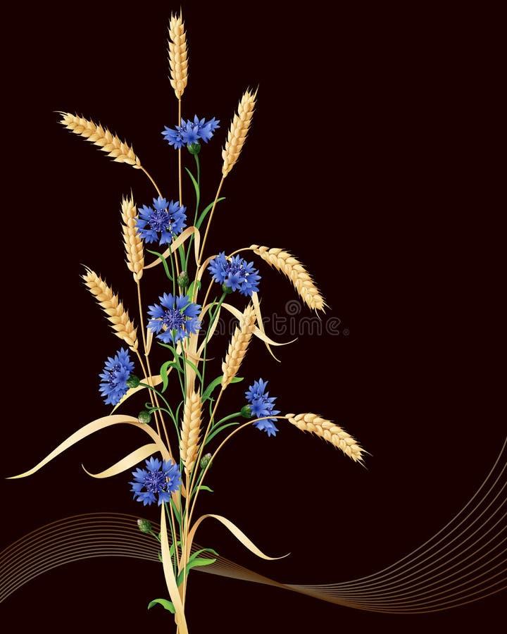 Bleuets et oreilles de groupe de blé sur le noir illustration libre de droits