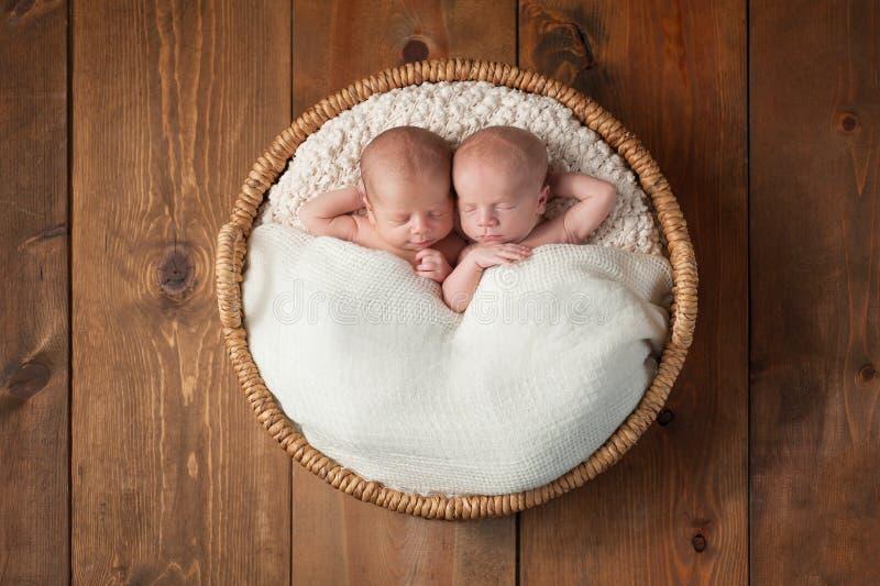 Bliźniacze chłopiec Śpi w koszu fotografia royalty free