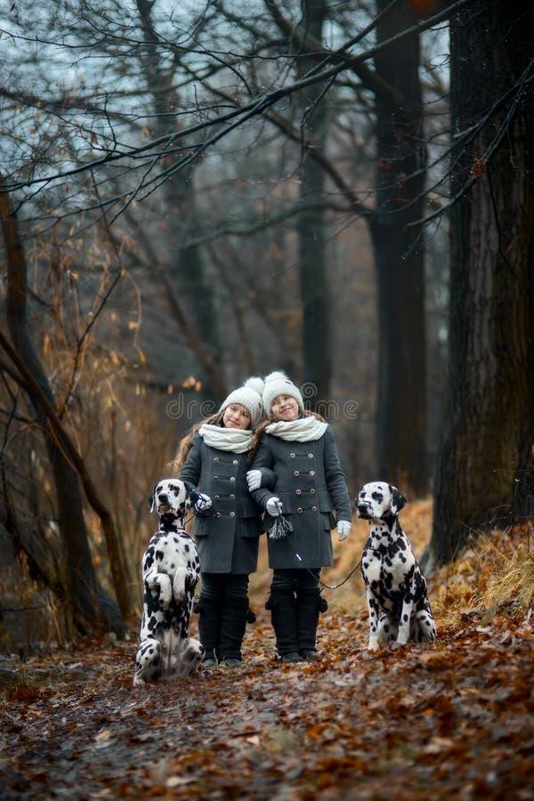 Bliźniak dziewczyn portreta Dalmatyńscy psy zdjęcie stock
