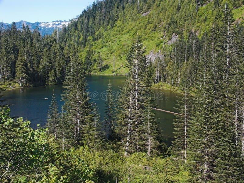 Download Bliżej Greider Mały Widok Jeziora Obraz Stock - Obraz złożonej z rośliny, góra: 140113