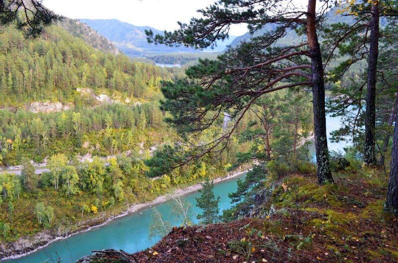 Blick auf den blauen Katun vom Monte Mazhelik Berg Altai, Dorf Askat lizenzfreie stockfotos