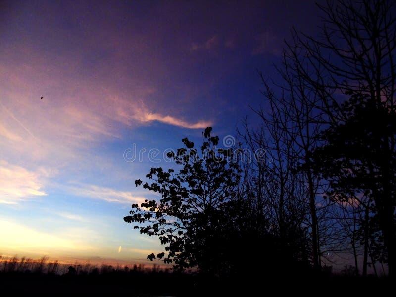 Blick auf den Himmel, wenn der Abend den Abend begrüßt stock abbildung