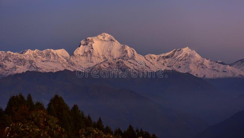 Blick auf die Gipfel von Dhaulagiri und Tukche im Morgengrauen des Poon Hill stockfoto
